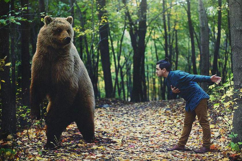 Встреча с дикими животными