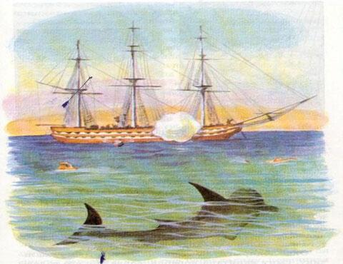 Тест по рассказу «Акула»