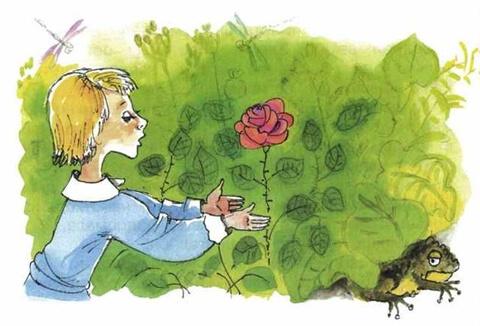 Тест по сказке о жабе и розе